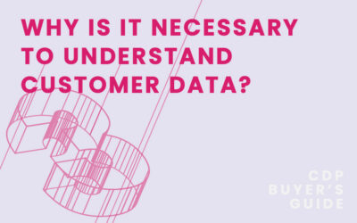 CDP Buyer's Guide Chapter 3 – Why is it necessary to understand customer data?