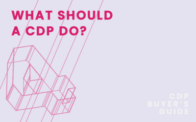 CDP Buyer's Guide Chapter 4 – What should a CDP do?