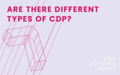 CDP Buyer's Guide Chapter 7 – Are there different types of CDP?
